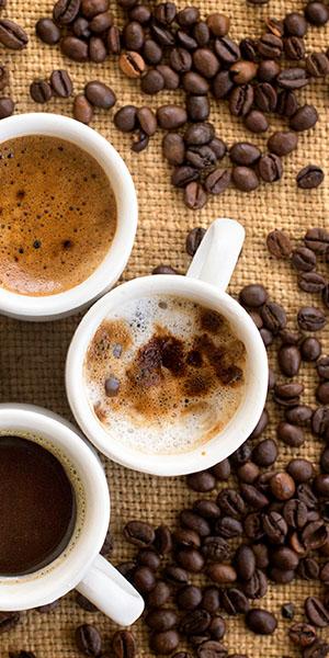 mogg coffee